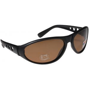 Hurricane Polariserade solglasögon svart med brun lins