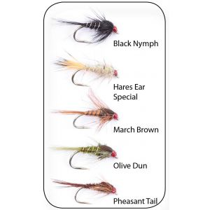 Hurricane Nymphs Weighted flugor 5-pack