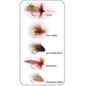 Hurricane Dry Fly Sedges flugor 5-pack